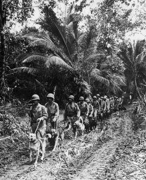 Well known photo of USMC Raiders on K-9 patrol, Bougainville, December 1943